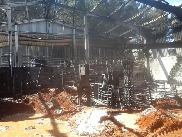 Empresa ficou destruída após incêndio de grandes proporções (Foto: Divulgação/Corpo de Bombeiros)