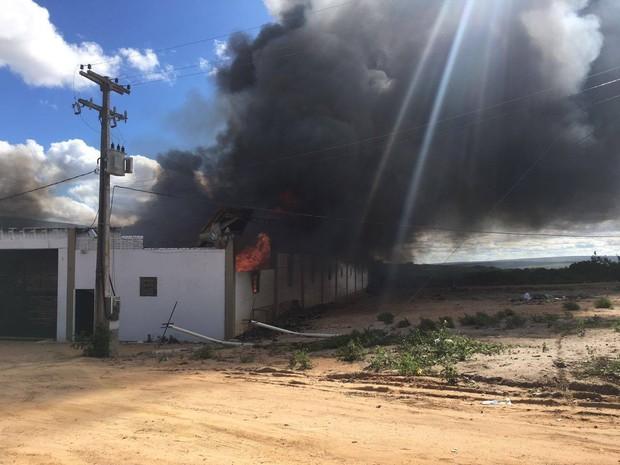 Bombeiros não souberam informar a causa do incêndio (Foto: Reprodução/Facebook ONG Amigos do Bem)