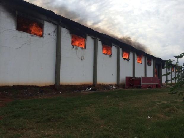Incêndio de grandes proporções atingiu granja de Bastos (Foto: Corpo de Bombeiros/Divulgação)